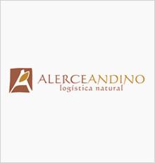 Alerce Andino